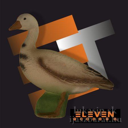 3D hus Eleven