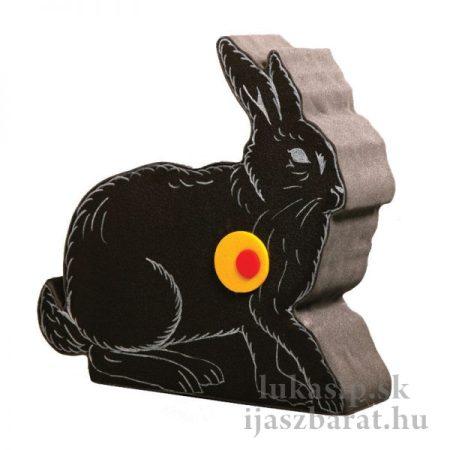 2D zajac