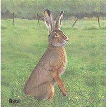 Papierový terč zajac