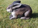 3D zajac Csumi