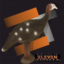3D divá morka Eleven