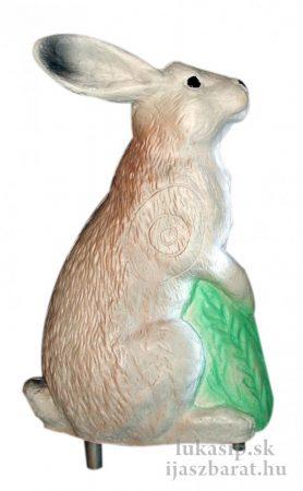3D zajac Eleven
